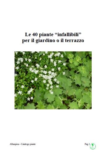 Cover_catalogo